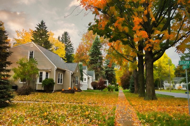 A row of homes with autumn trees out front | Fall HVAC Maintenance | Keep Your Equipment Working | Jamestown, ND